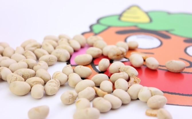 節分の豆まきは大豆派?それとも・・・